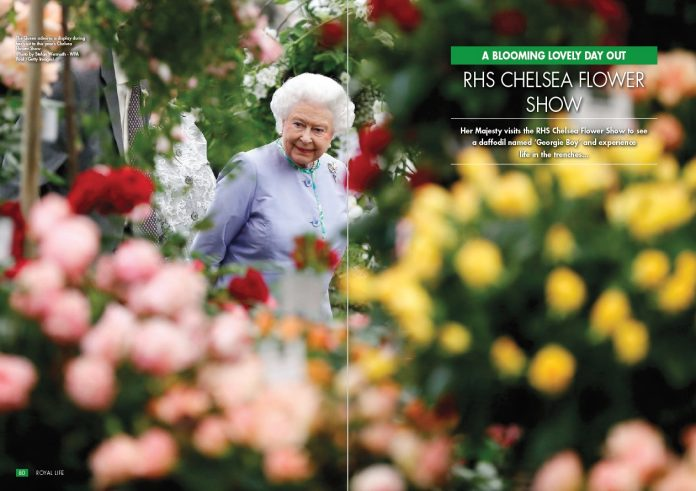 A Blooming Lovely Day Out- RHS Chelsea Flower Show