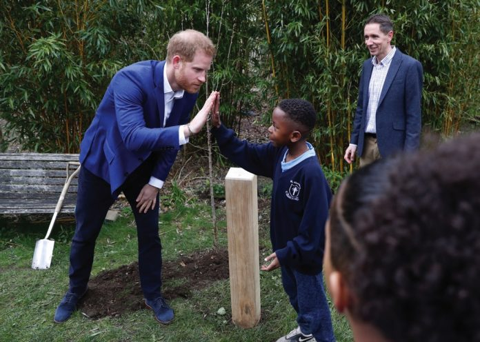 The Queen's Commonwealth Canopy initiative